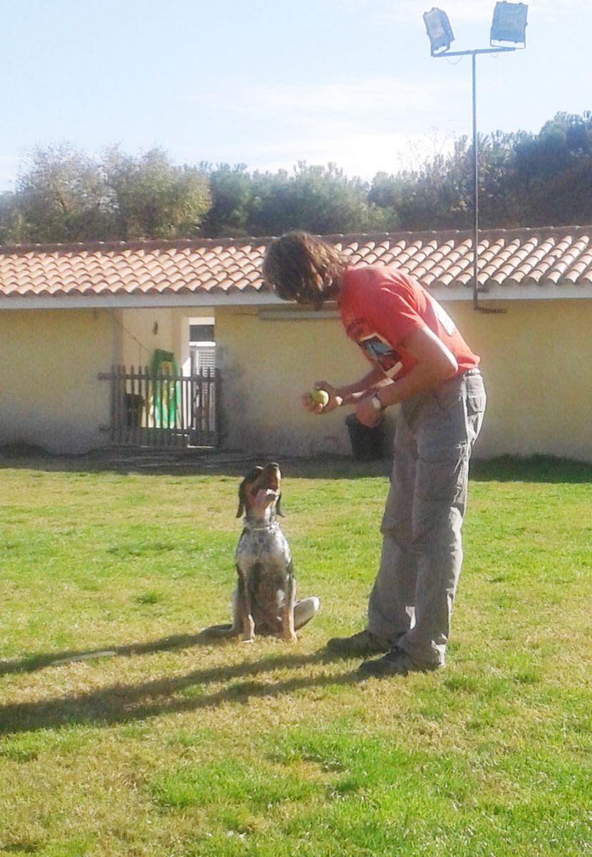 Iker tomando clases de adiestramiento con Luis